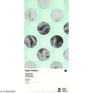 papier-de-soie-pois-argentes-sur-fond-vert-menthe-50-x-70-cm-2-pcs-l