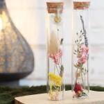 tube-en-verre-decoratif-fleurs-sechees-15-x-3-cm-1-pce-l-2