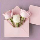 Papier - Enveloppes
