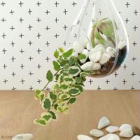DIY Déco : Réaliser une suspension florale tendance