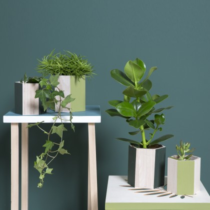 DIY : Décorer des pots en bois