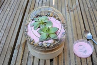 4. Etape 3 : Décorer le terrarium