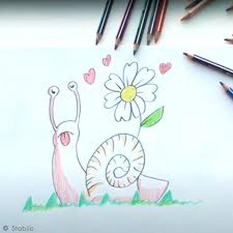 Tuto Video Dessiner Un Escargot Facilement Idees Conseils Et Tuto Beaux Arts Dessin