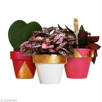 DIY décoration de pots de fleurs