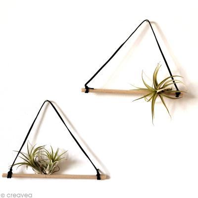 Suspension originale diy pour plantes sans terre id es conseils et tuto d c - Suspension pour plantes ...
