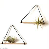 Suspension originale DIY pour plantes sans terre