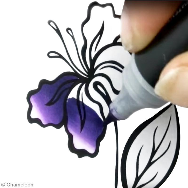 Feutre A Coloriage En Anglais.Diy Marqueur Chameleon Techniques De Coloriage Diy Video