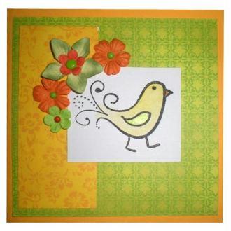 Carte de voeux Oiseau du paradis et droles d'oiseaux