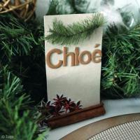 DIY Noël : Marque-place Nature