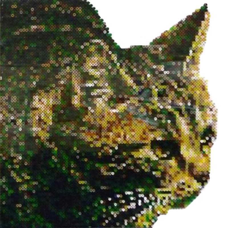 Transformer une photo en grille pour tableau en perles hama avec photofiltre id es conseils et - Perles a coller fer a repasser ...