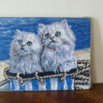 Chats sur un bateau