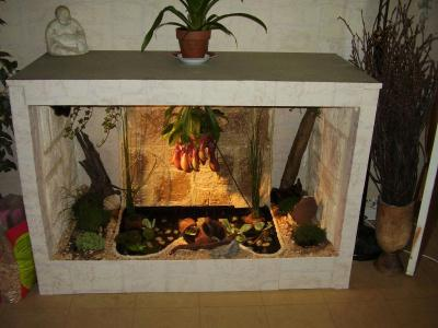 bassin d 39 interieur avec fontaine poissons cr ation techniques diverses de olympe ms n 1 571. Black Bedroom Furniture Sets. Home Design Ideas