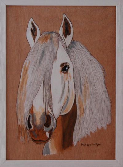 T te de cheval blanc pyrogravure sur bois cr ation pyrogravure de mphlpp n 32 427 vue 4 957 - Pyrogravure sur bois professionnel ...