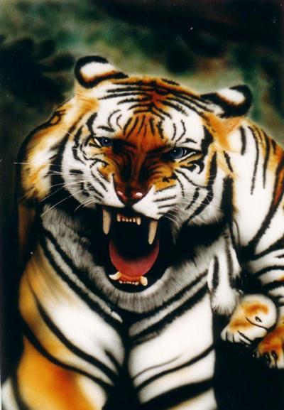 tigre sur pvc cr ation peinture multi supports de aerobrush n 3 727 vue 2 776 fois. Black Bedroom Furniture Sets. Home Design Ideas