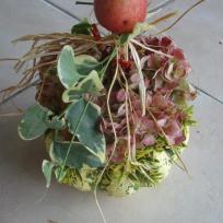 Composition d'automne avec sa pomme rouge