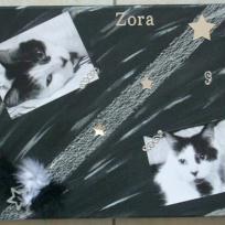 Cadre chat noir et blanc : Zora