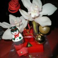 Composition florale de Noël rouge pour ma table