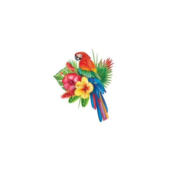 2 Cabochons Verre 20 mm, Cabochon Rond, Perroquet Fleur Tropique - Photo n°1