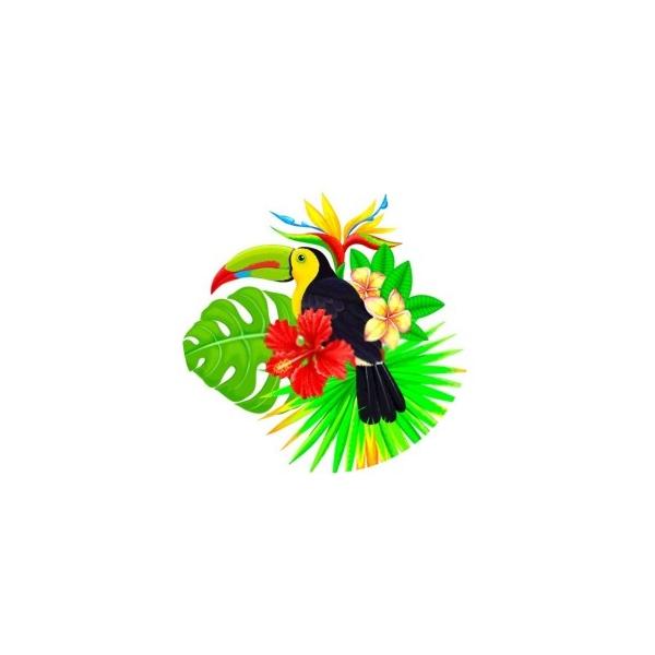 2 Cabochons Verre 14 mm, Cabochon Rond, Toucan Fleur Tropique 1 - Photo n°1
