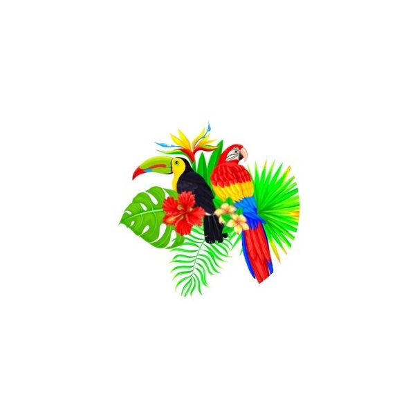 2 Cabochons Verre 14 mm, Cabochon Rond, Perroquet Toucan Hibiscus - Photo n°1