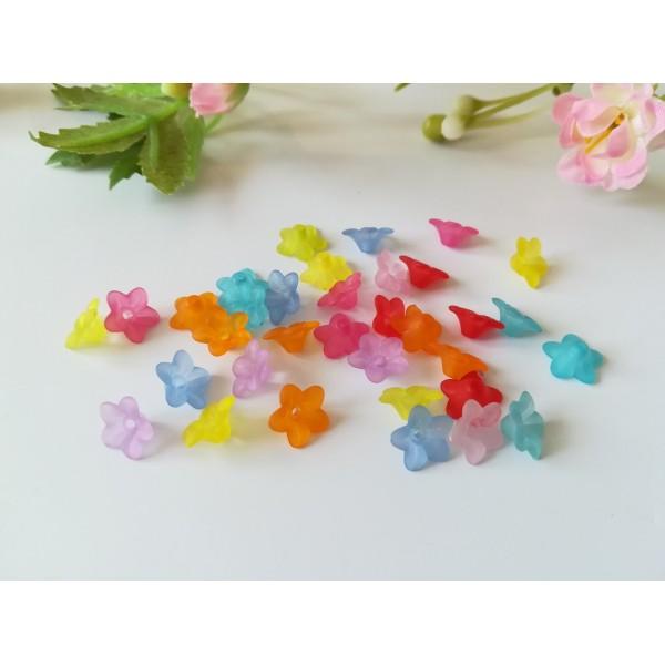 Perles acryliques givrée fleur multicolore x 20 - Photo n°1