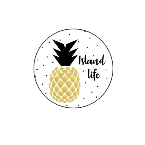 Ananas Doré Island Life Moment 2 Cabochons - Photo n°1