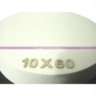 Disque épaisseur 10 cm, diamètre 60 cm, polystyrène pro haute densité, 2
