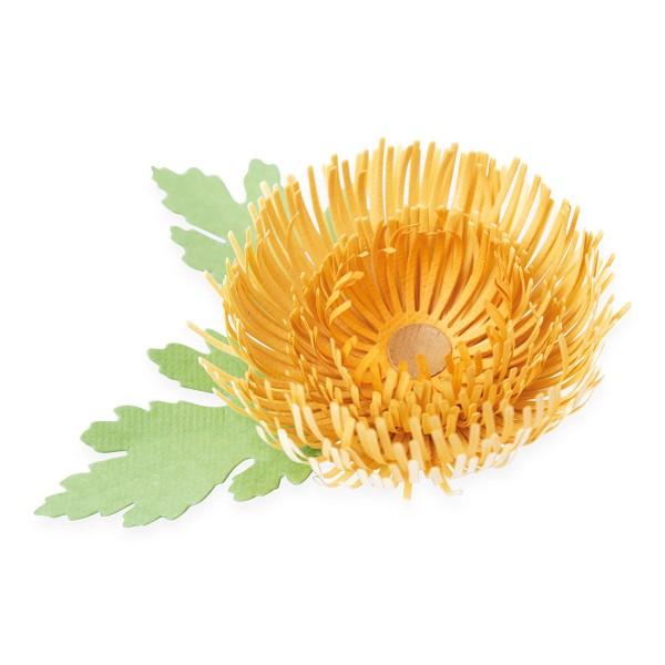 Matrice Sizzix Thinlits - Chrysanthème - 5 pcs - Photo n°2