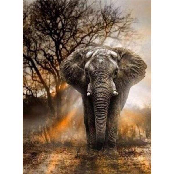 Broderie Diamant - Eléphant dans la Savane 40X50cm - Photo n°1
