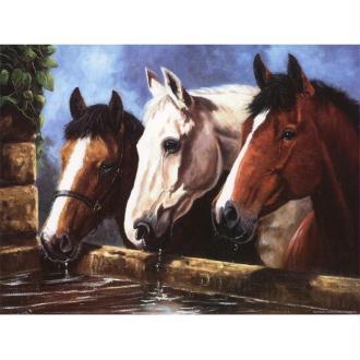 Image 3D Animaux - 3  chevaux à l'abreuvoir 40 x 30