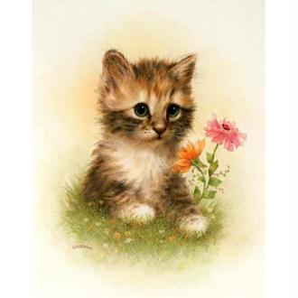 Image 3D Animaux - Chaton marron et fleur 24 x 30 cm