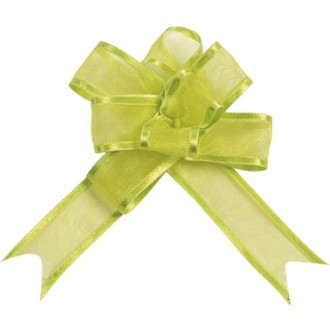 Mini noeud Organdi vert anis x5