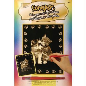 Gravure à gratter Scraper Or 20 x 25 cm - Chats