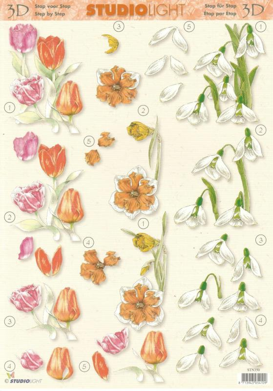 Feuille 3D à découper A4 Fleurs Tulipe Crocus Narcisse - Photo n°1