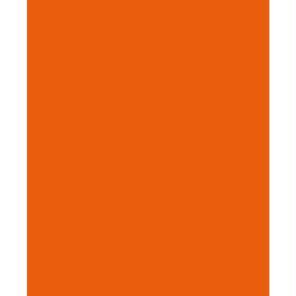 Feutrine 1 mm 23,8 x 30 cm Orange de Chine