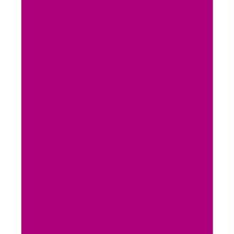 Feutrine 1 mm 23,8 x 30 cm Violet