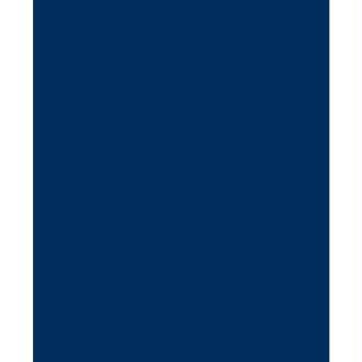 Feutrine 1 mm 23,8 x 30 cm Bleu indigo