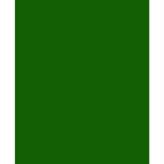 Feutrine 1 mm 23,8 x 30 cm Vert pré