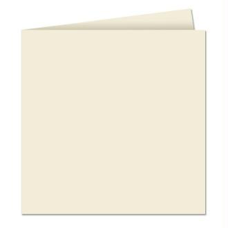 Papier Pollen carte double 160 x 160 Gris perle x 25