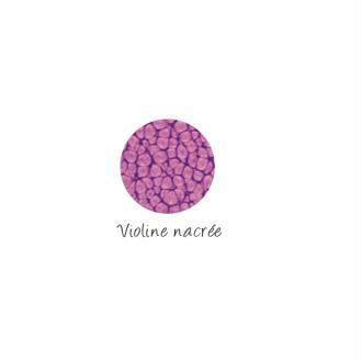 Peinture Fantasy Prisme Violine nacrée - Pébéo - 20 ml