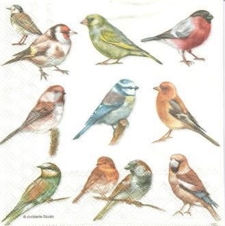 4 Serviettes en papier Oiseaux Format Lunch