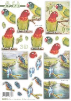 Feuille 3D pré-découpée A4 Oiseaux Perroquet Martin Pâcheur