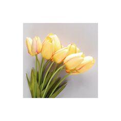 loisirs créatifs art floral Lot de 6 boules d/'osier dorées 3,5 cm