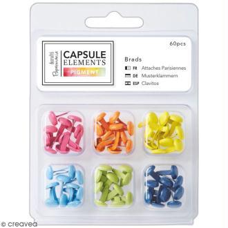 Attaches Parisiennes Papermania - Collection capsule Elements Pigment 6 couleurs - 60 pcs