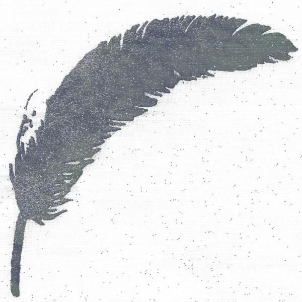 Poudre de paillettes à effet Blanc aurore boréale 10 ml - Photo n°2
