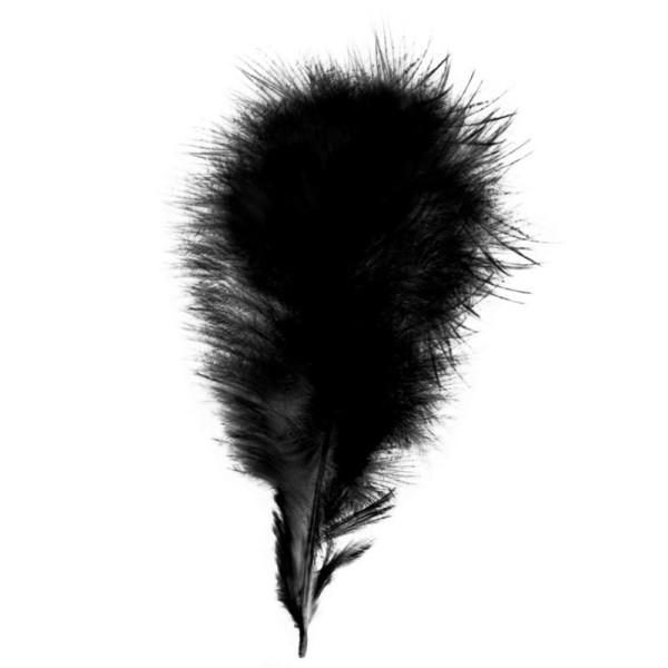 Plumes marabout Noires - 15 pièces - Photo n°1
