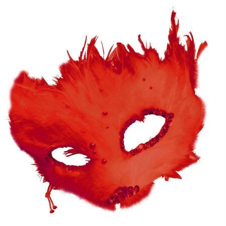 Plumes déco Rouge - 15 pièces - Photo n°2