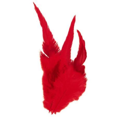 Plumes déco Rouge - 15 pièces - Photo n°1