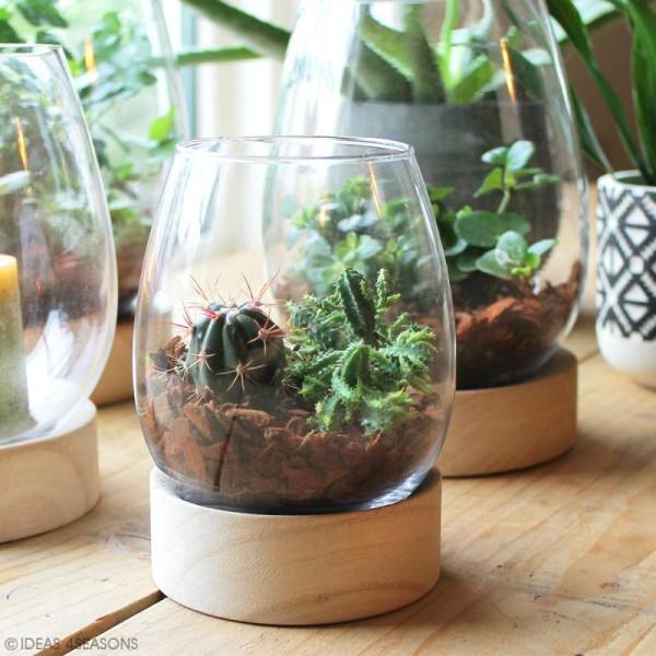 Vase en verre avec base en bois - Ovoïde - 13,5 x 11 cm - Photo n°2