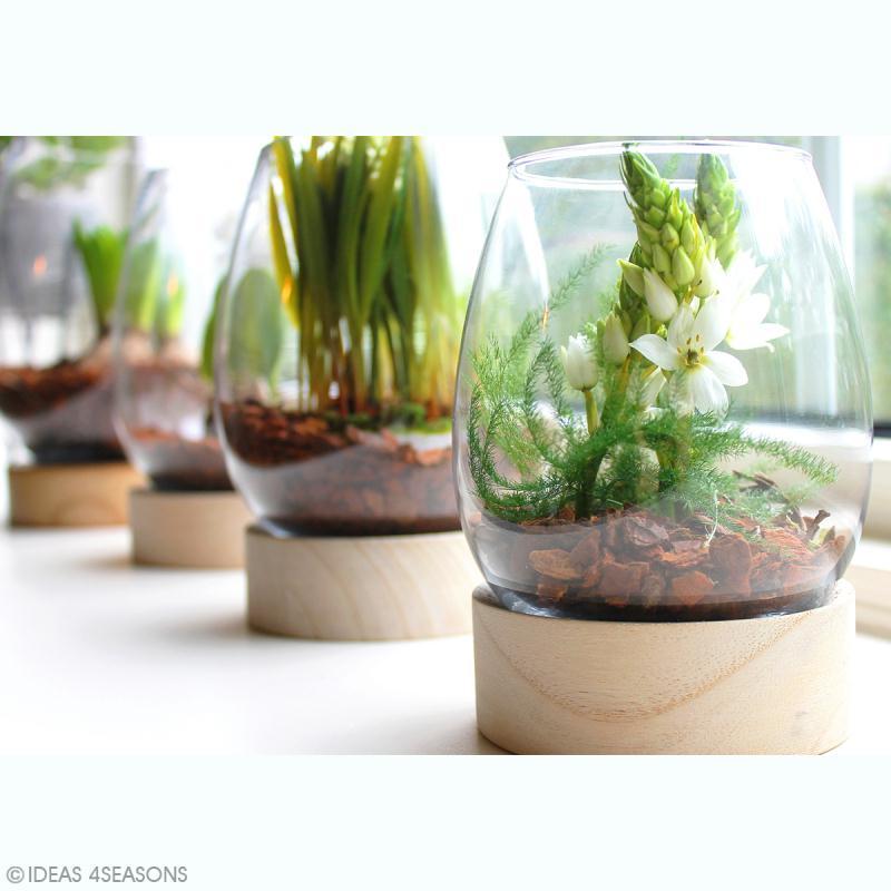 Vase en verre avec base en bois - Ovoïde - 18 x 14 cm - Photo n°3